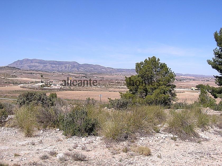 Building land in Pinoso in Alicante Dream Homes