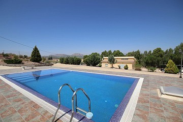 Two Detached Villas with a pool on one large plot