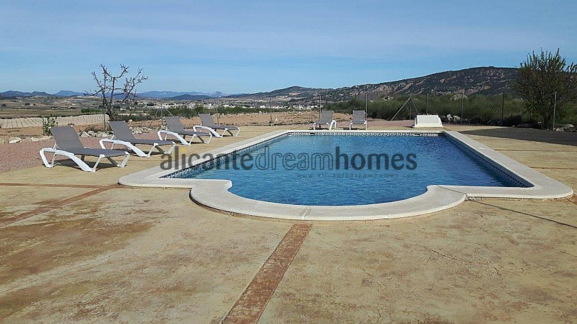 Luxury Villa in Pinoso in Alicante Dream Homes
