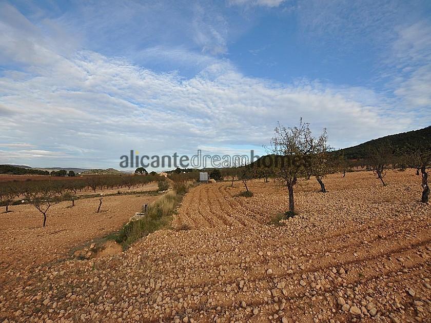 Amazing Eco villa in the Sierra de Salinas national park  in Alicante Dream Homes