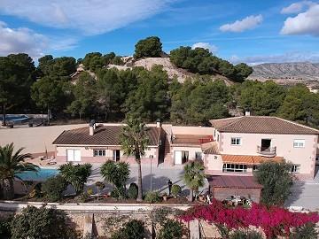 Large luxury villa overlooking the town
