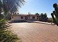Large Detached Villa with a pool in Salinetas, Petrer in Alicante Dream Homes