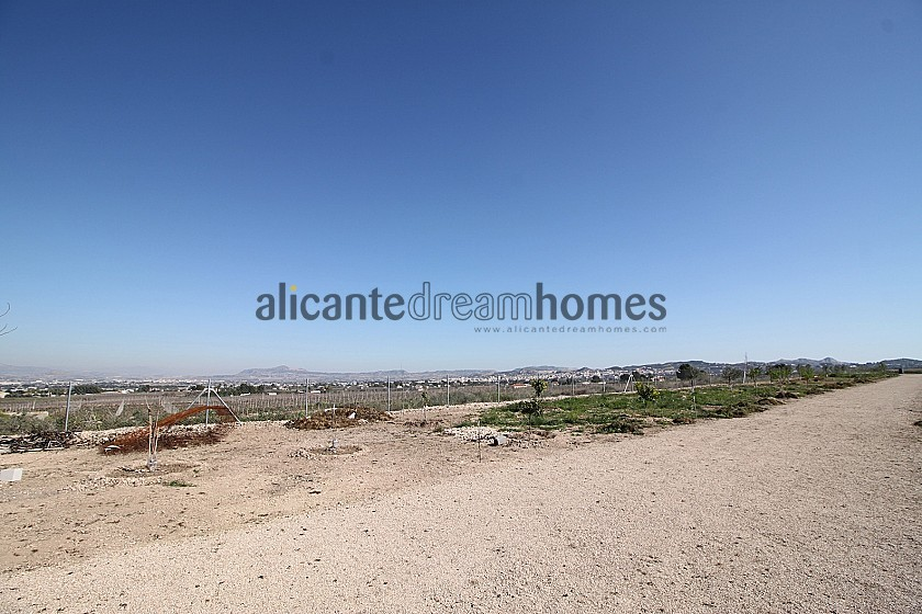 Sands of Time - horses and animal lovers retreat in Alicante Dream Homes