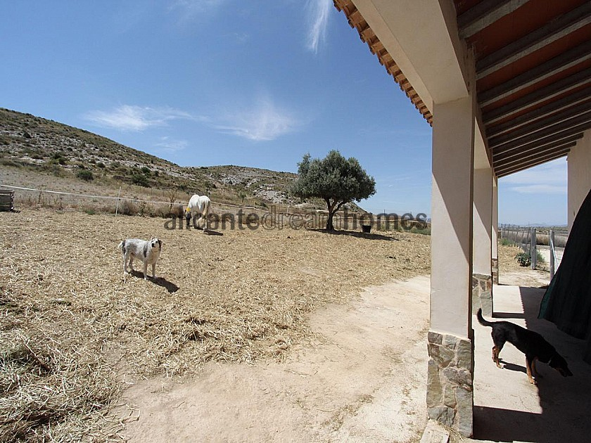 Large Rustic Home with 200m2 quality stable block in 20,000m2 in Alicante Dream Homes