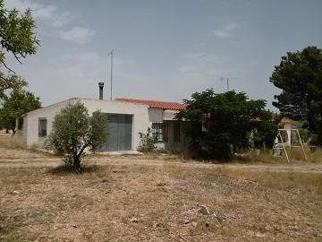 Villa for reform - 12km from Yecla