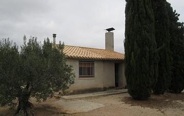 Villa in Caudete
