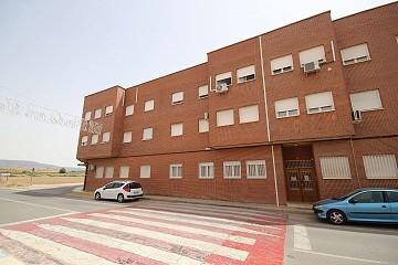Apartment in Pinoso