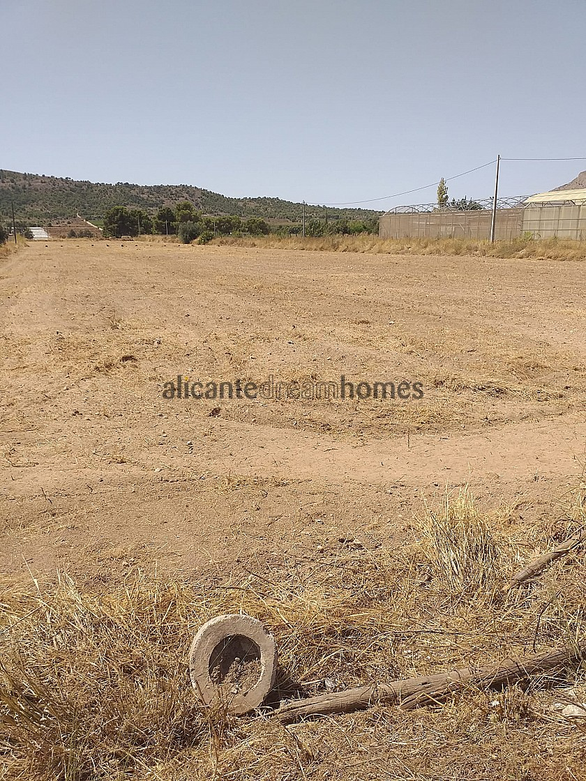 Building Plot in Aspe in Alicante Dream Homes